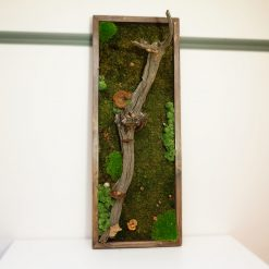 Moss wall art with branch